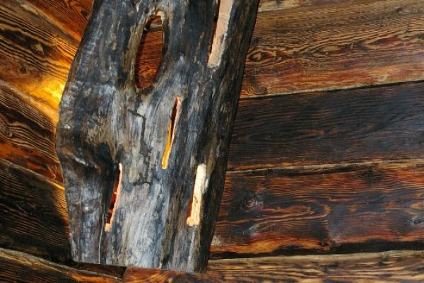 saunos_17_93A098A35-85A3-50B7-B69F-0D4AD4D57A2F.jpg